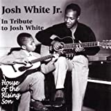 House Of The Rising Son/ In Tribute To Josh White