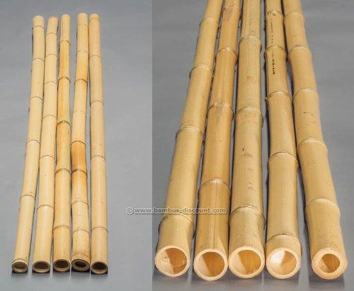 bambus-discount.com BMY-200-060 CB130224