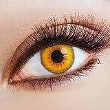 aricona Farblinsen farbige Kontaktlinsen Halloween Jahreslinsen zum Vampir Kostüm