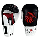 Best Boxing Gloves 16ozs - Valour Strike Boxing Gloves Sparring ★ Pro Punch Review