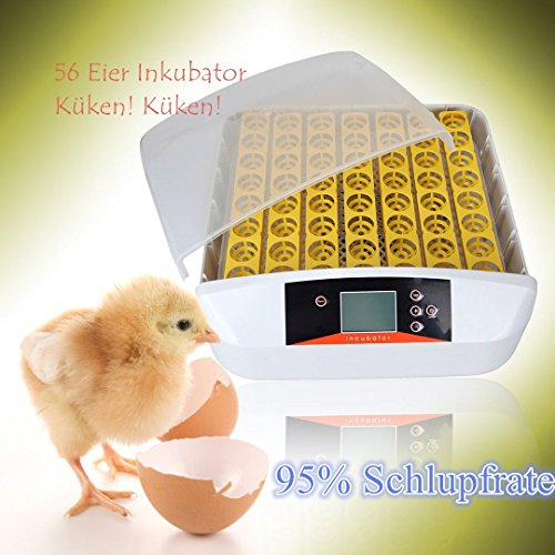 56 Eier Inkubator Brutmaschine Incubator Flächenbrüter, Qulista Geflügel Brutautomat Vollautomatisch