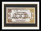 GB Eye Harry Potter Ticket Foto, gerahmt, 20,3 x 15,2 cm