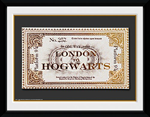 GB eye LTD, Harry Potter, Ticket, Fotografía enmarcada, 15 x 20 cm