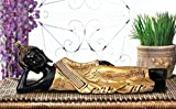 Vivaan Exim Home Office Decor Item Sleeping Buddha Showpiece Figurine For Diwali Gift, Small Temple, Spiritual Decor, Festive Decor, Divine buddha Idol, Bhagwanji Gifts, Spiritual Gifts, Gift Set, Cheap Gifts, Tabletop, Car, Table Clock, Corporate Gift - Size (4X13X4,Inch) Gold