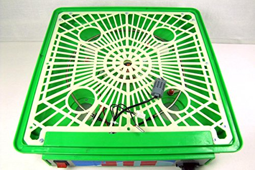 Inkubator VOLLAUTOMATISCH BK55Lux + Zubehör, 55 Eier, Brutautomat, Brutmaschine, sehr leise - 4