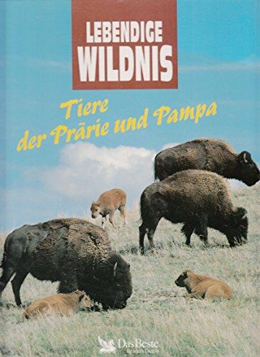 tiere-der-prarie-und-pampa-bisons-monarchfalter-stinktiere-prariehuhner-prariehunde-ameisenbaren-koj