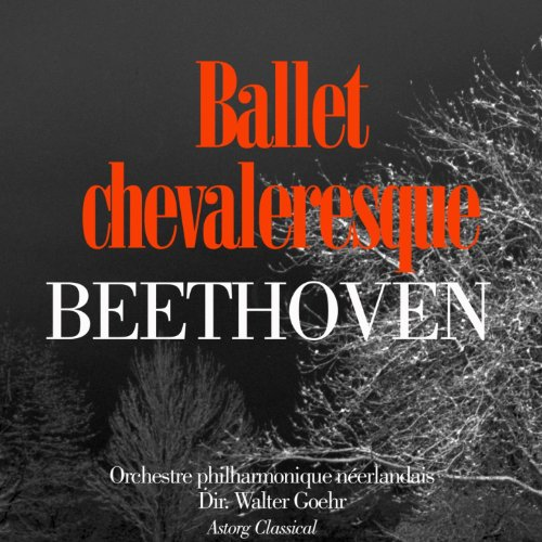 Beethoven : Ballet chevaleresque