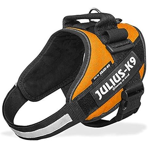 Pettorina Julius-K9 IDC Powerharness Orange Tg. 3 - Resistente pettorina arancione, regolabile in nylon, per cani
