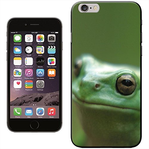 Fancy A Snuggle 'Grüner Frosch auf Blatt' Hard Case Clip On Back Cover für Apple iPhone 5C Close Up Of Frogs Face
