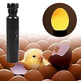 Incubadora Portátil Brillante Lámpara LED Luz Fresca Probador Brillante Incubadora de Huevo