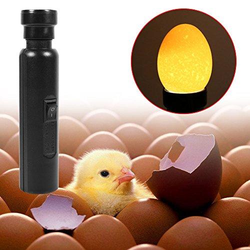 Incubatore lampada uovo a candela con luce fredda portatile led nero super bright egg candler tester novità per monitoraggio dell'incubatrice per uova