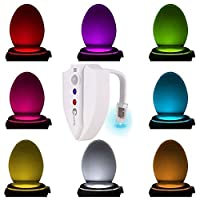 Caxmtu 8 Colors LED Toilet Nightlight Motion Activated Light Sensitive Dusk to Dawn Battery-operated Lamp from Sampson Retail