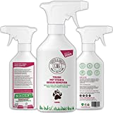 Best Cat Urine Removers - C&G Pets |Tough Pet Stain Urine and Odour Review