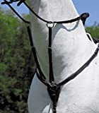 WALDHAUSEN STAR Vorderzeug, schwarz, Pony, schwarz, Pony