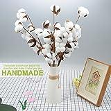 takefuns Baumwolle Stiele Baumwolle Stiele Farmhouse Style Display Filler–Floral Dekoration, PU, weiß, Large