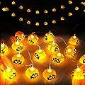 ELENKER Kürbis Lichterkette für Halloween Weihnachten Warmweiß