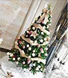 Gstrand Christmas Set, DIY High-End Artificial 5 Foot Christmas Tree Decoration Including Other Decorative Accessories,5Ft
