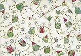 Turnowsky Klappkarte Weihnachten Bunte Eulen SET 2 Karten