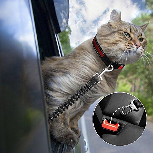 TOPHGDIY Premium Hunde Sicherheitsgurt für das Auto – Einstellbar mit elastischer Ruckdämpfung - 2
