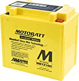 Yamaha YFM 350 G Grizzly (2WD) (Europe) 2007-2010 Battery (Motobatt) (Each)