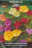 Mirabilis - Mixed - Summer Flowering Bulbs
