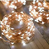 Flexble Battery Powered Fairy Lights 10M/33Ft String Lights 100 LEDs Copper Wire Lights Outdoor/Indoor Use Garden Home Decorative Rope Lights Starry Lights for Christmas,Party,Valentines Day (Bright White)
