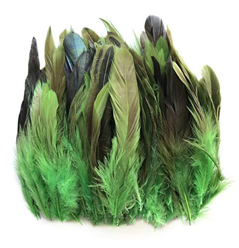 ERGEOB Hahn Feder - Ideen für die Kostüme, Hüte, Home dekor Circa 100 stück 12-18cm grün