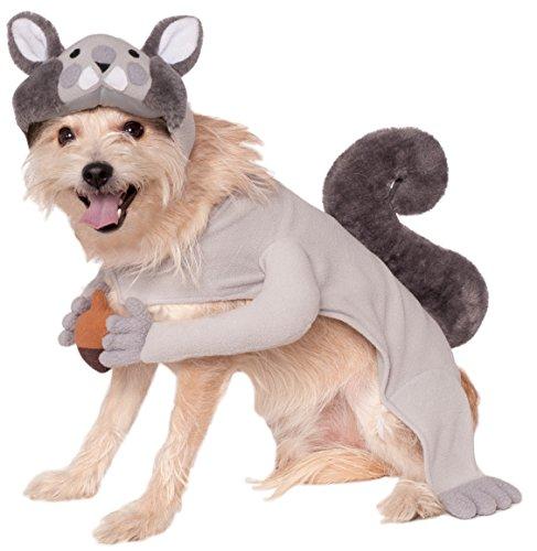 ny Eichhörnchen Pet Kostüm (Hund Halloween Kostüm Video)