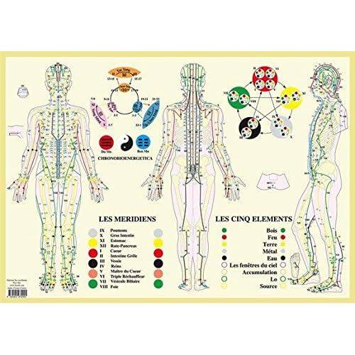 Méridiens et 5 éléments : Poster