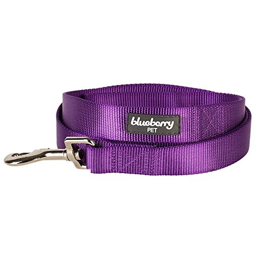 Blueberry-Pet-Durable-Classic-Solid-Color-Dog-Lead-150-cm-x-1cm-for-Puppy-in-Dark-Orchid-X-Small-Basic-Nylon-Leads-for-Dogs-Matching-Collar-Harness-Available-Separately