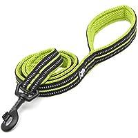 Rantow 110cm Largo 1.5cm ancho transpirable perro correa con seguridad nocturna de 3M reflexivo rayas, cómodos perros leves cuerda guía para perros pequeños (Verde)