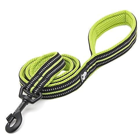 Rantow 200cm Long 2cm Large respirant matelassé Mesh Dog Leash avec 3M Night Safety réfléchissantes rayures, Soft confortable corde de chien pour les grands / moyens chiens (vert)
