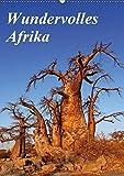 Wundervolles Afrika (Wandkalender 2018 DIN A2 hoch): Über die Vielfalt eines Landes (Monatskalender, 14 Seiten ) (CALVENDO Orte) [Kalender] [Apr 01, 2017] Woyke, Wibke - Wibke Woyke