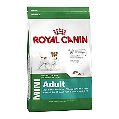 Royal Canin Dog Food Mini Adult