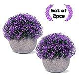 Small mini artificiale piante per casa/ufficio/soggiorno decorazione, plastica verde erba vaso per piante in vaso di fiori con grigio Purple