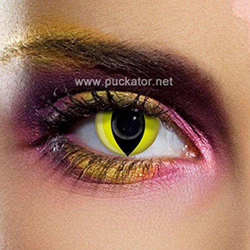 Funky Vision Kontaktlinsen - 3 Monatslinsen, Yellow Cat, Ohne Sehstärke, 1 Stück