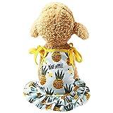 YWLINK Sommer Haustier RüSchen Sling Kleid HüNdchen Prinzessin Strand Party SchöNe Erdbeere/Ananas Puppy Kleid (Hellblau,M)