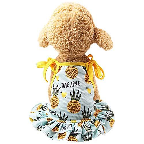 YWLINK Sommer Haustier RüSchen Sling Kleid HüNdchen Prinzessin Strand Party SchöNe Erdbeere/Ananas Puppy Kleid (Hellblau,XL)