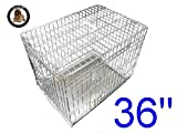 Ellie-Bo Dog Puppy Cage Folding 2 Door Crate with Non-Chew Metal Tray, Silver, Large, 36 Inch