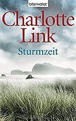 Sturmzeit: Roman (Die Sturmzeittrilogie, Band 1) hier kaufen
