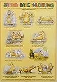 Sauna Badeanleitung