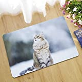 Epinki Gummi Teppich Katze Schnee Muster Teppiche für Wohnzimmer Schlafzimmer Bunt 45x75CM