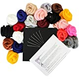 Fantastic Crafting Wet Dry Felting Felt Kit Set With Needle, Pad, Instructions by Curtzy TM