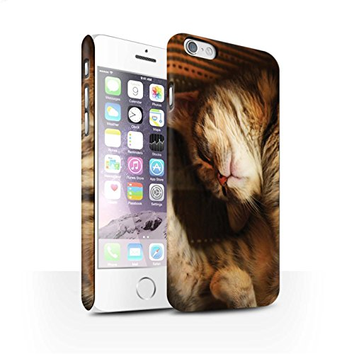 Officiel Elena Dudina Coque / Clipser Matte Etui pour Apple iPhone 6 / Petit Panda/Bambou Design / Les Animaux Collection Endormi/Tigré Chat