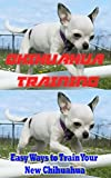 Chihuahua Training, Easy Ways to Train Your New Chihuahua: Training, Breed History, Appearance, Unique Health Problems, and Social Temperament