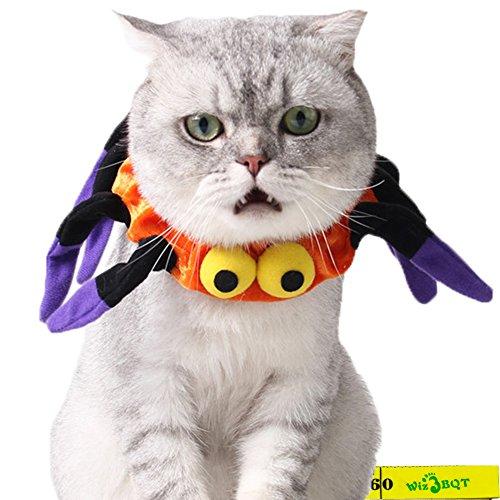 Natur Kostüm Der Elemente - Wiz BBQT Creepy Katze Hund Pet Halloween Kostüme Elastic Spider Halsband für Kleine Katzen Hunde Haustiere Kitten Puppy