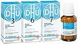 DHU Schüßler-Salze Immun-Kur,240St
