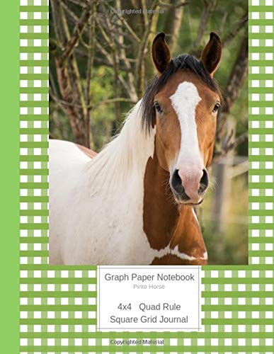 Graph Paper Notebook Pinto Horse: Large Quad Rule 4x4 Square Grid Journal (Graph Paper 4x4 Book, Band 10) -
