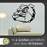 KIWISTAR Bulldogge - Wachhund Stachel Zähne Wandtattoo in 6 Größen - Wandaufkleber Wall Sticker