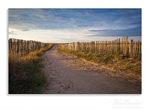 Wallario Herdabdeckplatte / Spritzschutz aus Glas, 1-teilig, 80x52cm, für Ceran- und Induktionsherde, Motiv Sandweg an einem Strand in Frankreich, Bretagne